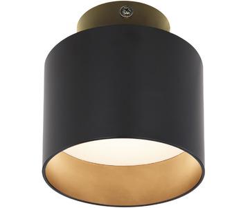 Потолочный светодиодный светильник Globo Jenny 12015B