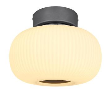 Потолочный светодиодный светильник Globo Boomer 15437D