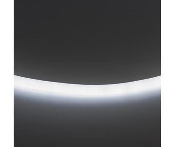 Гибкий неон Lightstar 9,6W/m 120LED/m холодный белый 50M LS720 430204