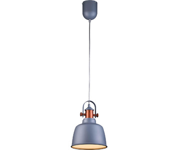 Подвесной светильник Lucia Tucci Industrial 1820.1 Sand Silver