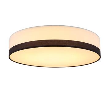 Потолочный светодиодный светильник Globo Maggy 15385D2